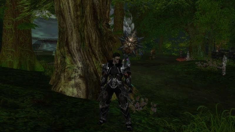 Cool Screenshots - Page 2 Aion0013