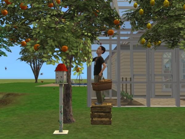 A Little Sampling of my Sims 2 Stories Sims_210