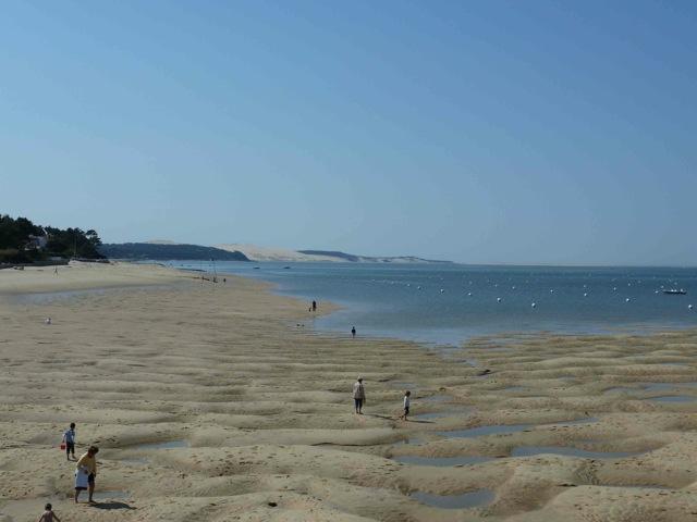 Gironde - balade du 17 avril Balade12