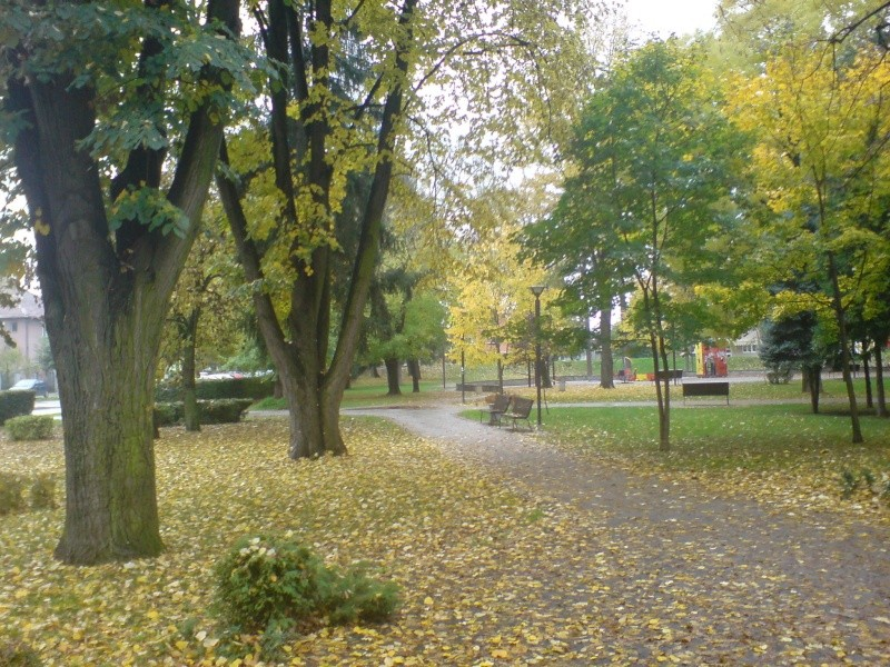 Gradski park Dsc00022