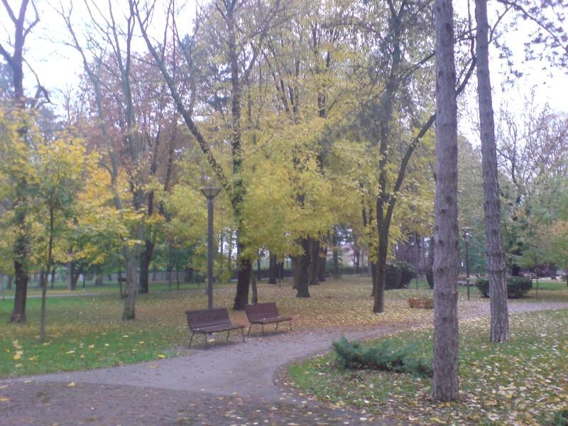 Gradski park Dsc00023