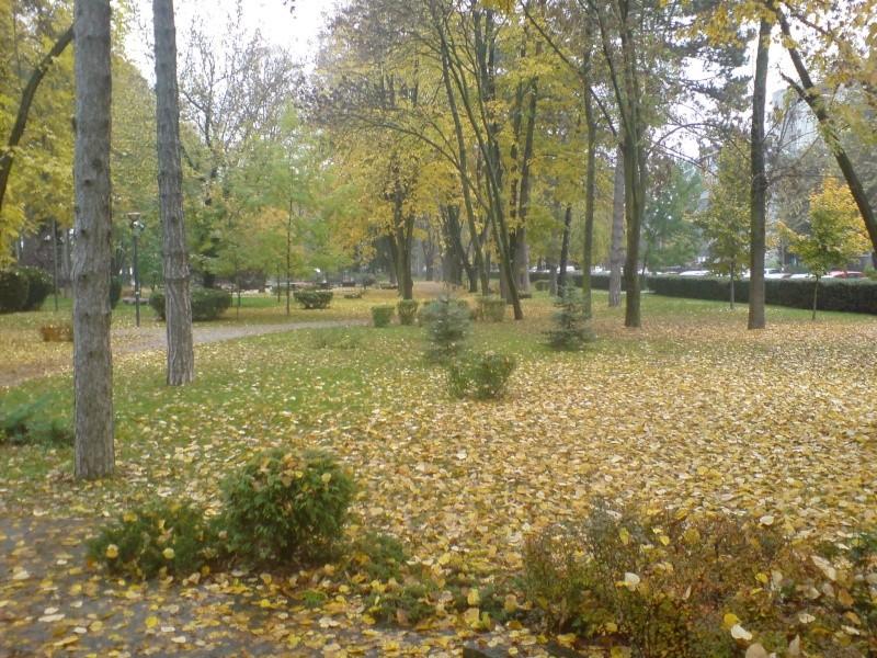 Gradski park Dsc00024