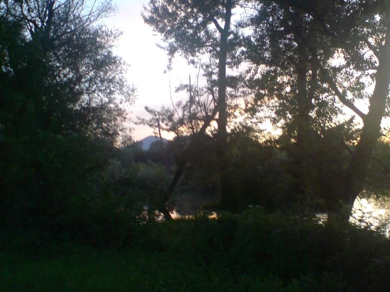 Zapadna Morava Dsc01814