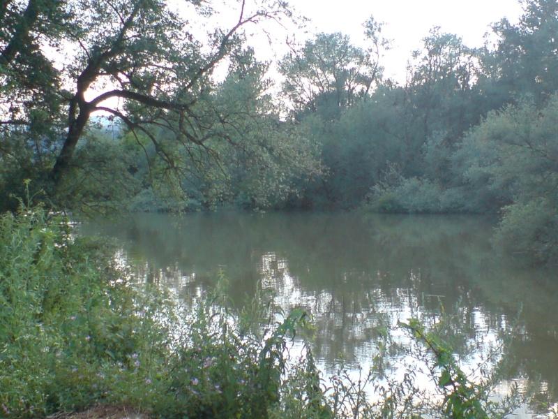 Zapadna Morava Dsc03120