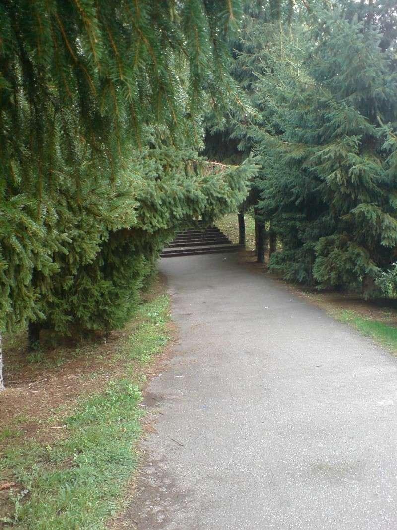 Gradski park Park_210