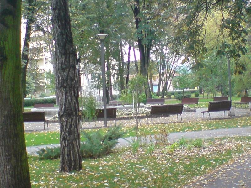 Gradski park Park_310