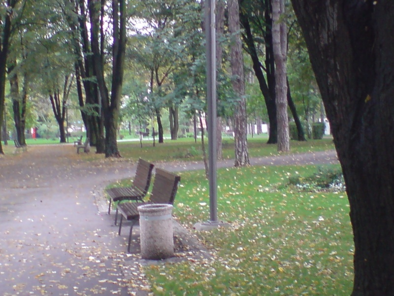 Gradski park Park_410