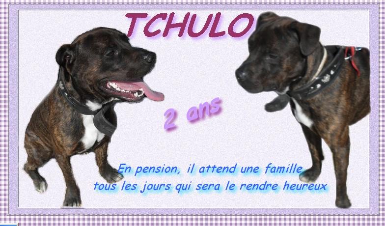 TCHULO staff 2 ans en octobre (83) Tchulo10