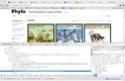 graphic glitch Chrome10