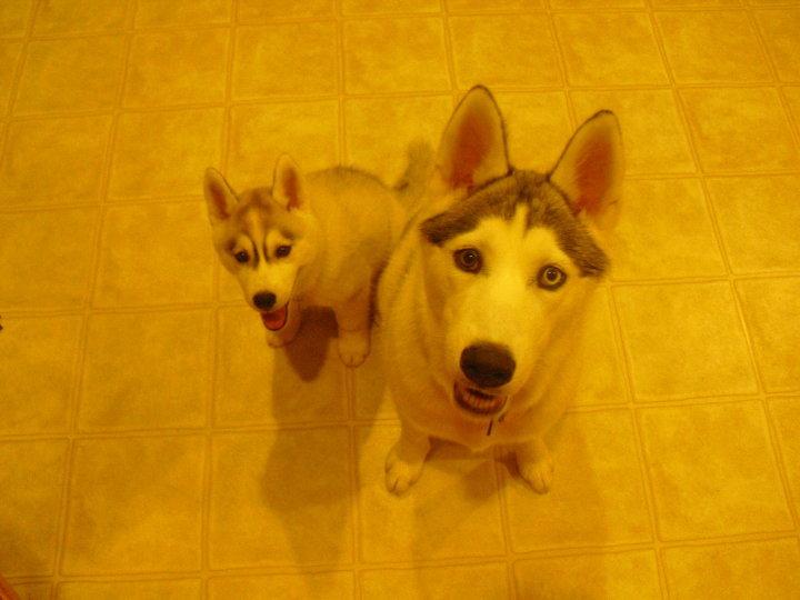 Kye&&Kali :) <3 36875_12