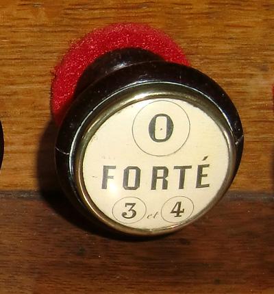 Debain 5 jeux 1/2 Forte310