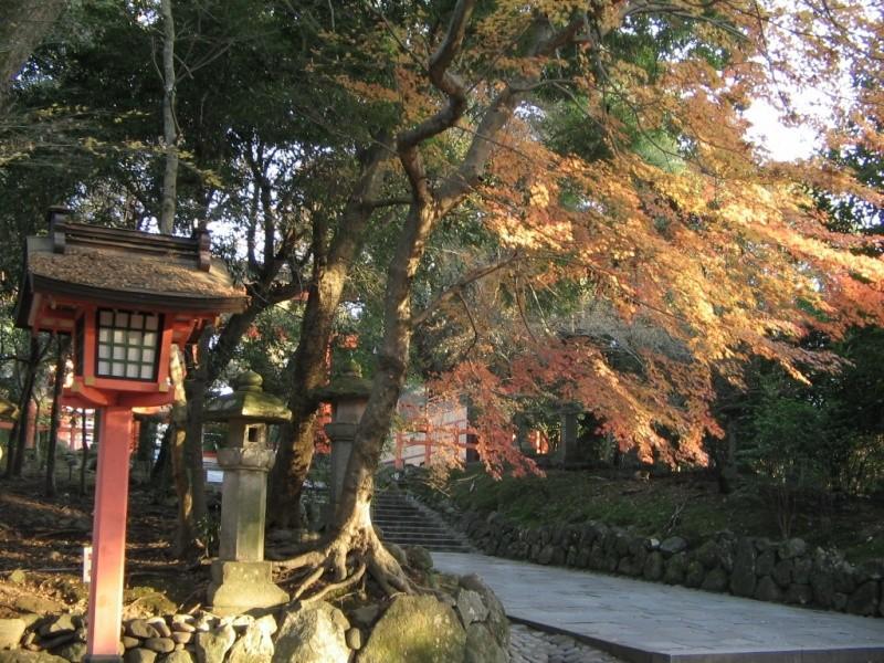 Nihon no shashin Jap6_010