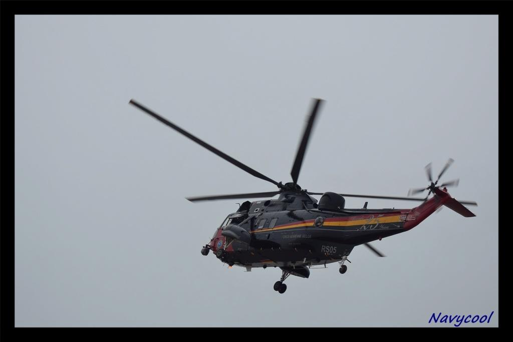 dernier vole et adieu de seaking (Wenduine) Dsc_0030