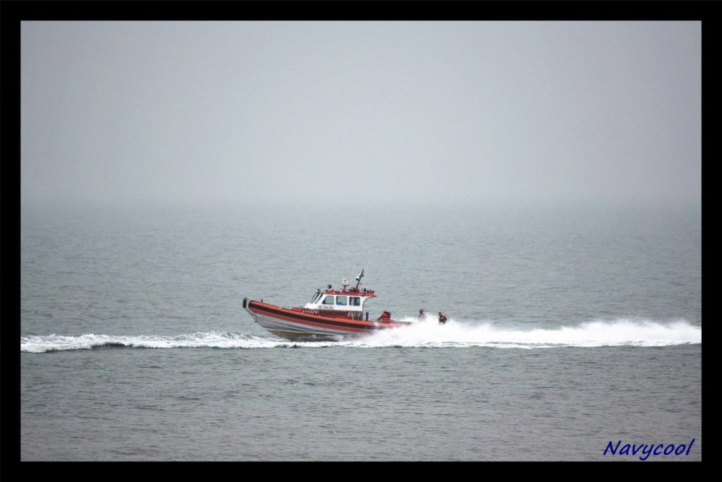 dernier vole et adieu de seaking (Wenduine) Dsc_0037