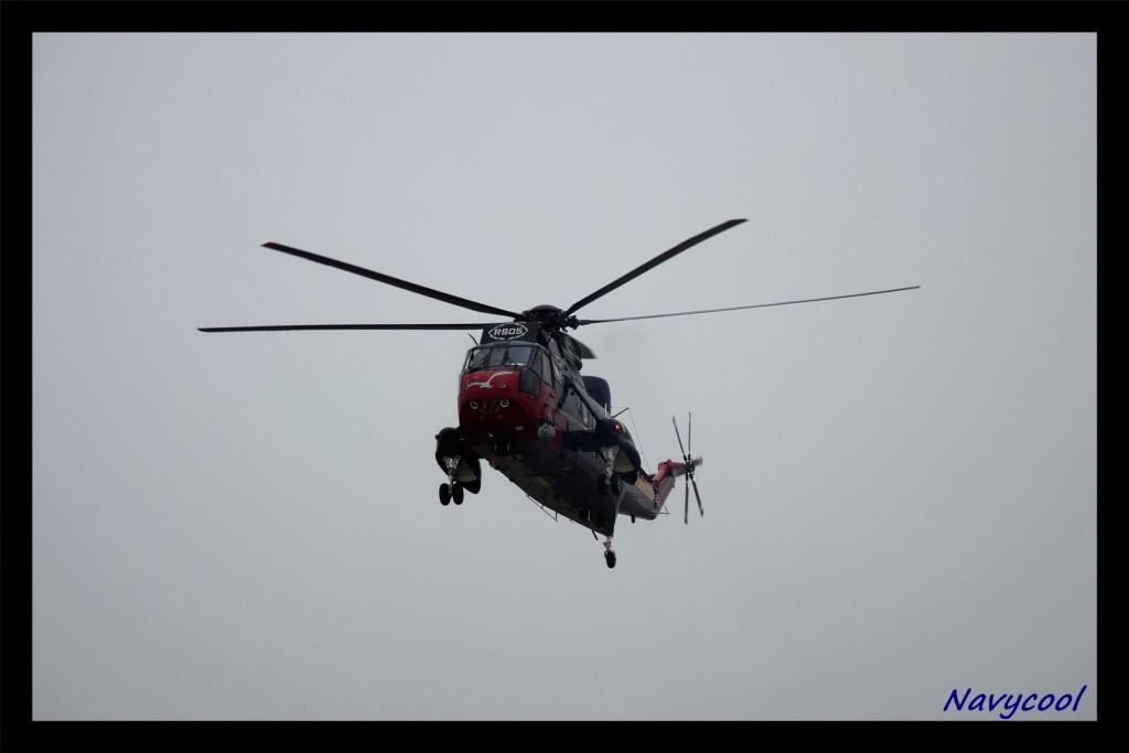 dernier vole et adieu de seaking (Wenduine) Dsc_0039
