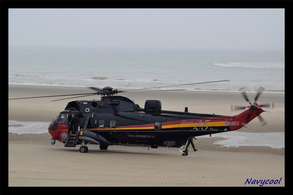 dernier vole et adieu de seaking (Wenduine) Dsc_0040
