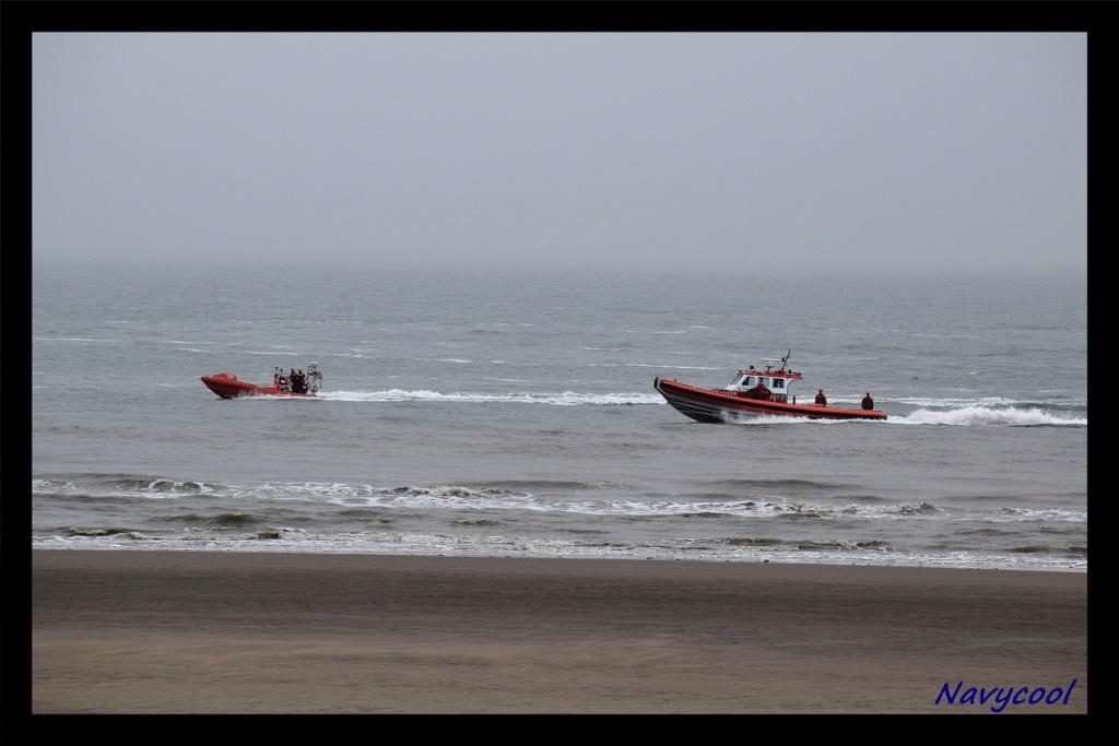 dernier vole et adieu de seaking (Wenduine) Dsc_0047