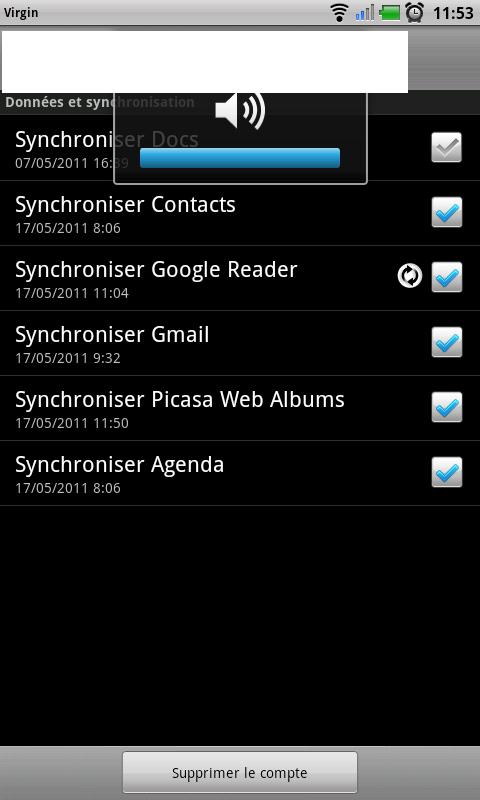 Comportement du sytème DELL pour la lecture de video via un album Picasa (web) Screen10