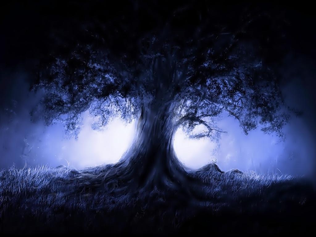 Árvore da Esperança Arvore10