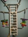 """Arbre """"aire de jeux"""" et autres jouets faits maison. Img_7318"""