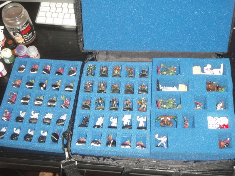 Have BloodBowl, will travel...how to do it better and lighter P4250610