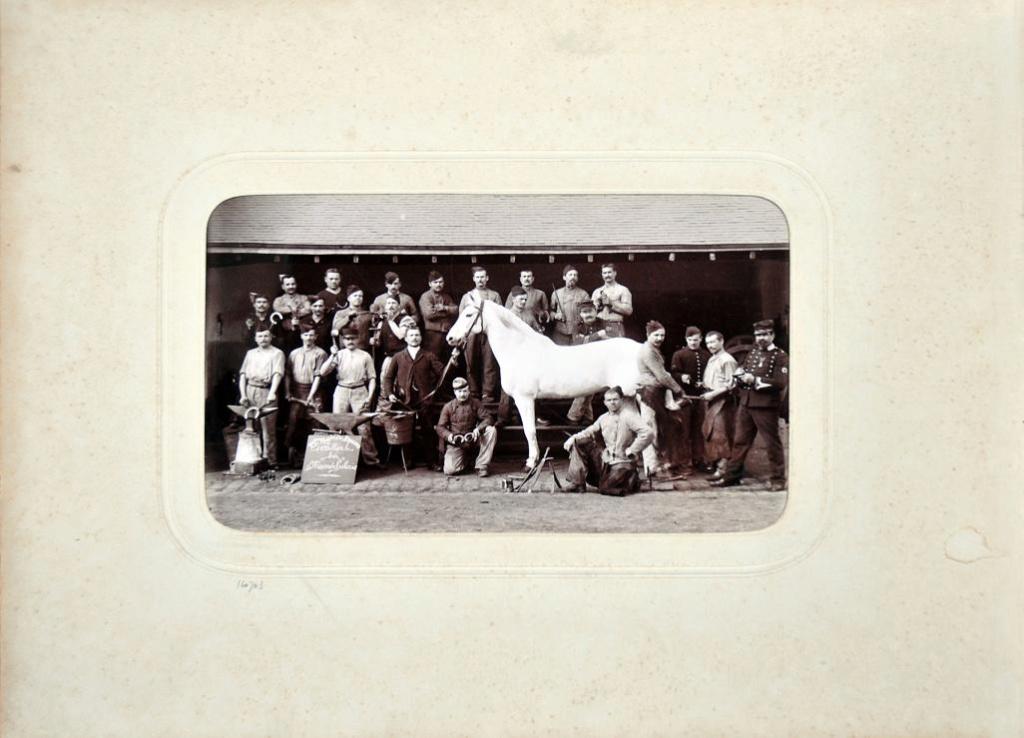 Album du 25e Dragon de 1897 en photo originale 2110