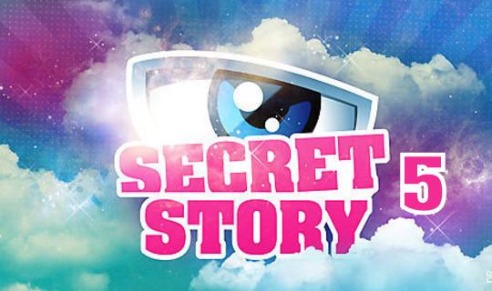 Des jumeaux dans Secret Story 5 Secret12
