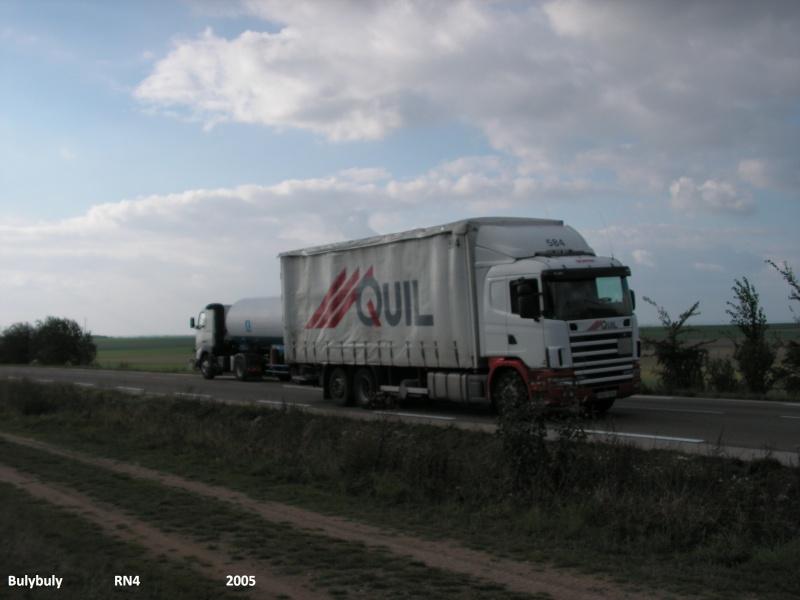 Quil (Velaine en Haye, 54) 1_05410