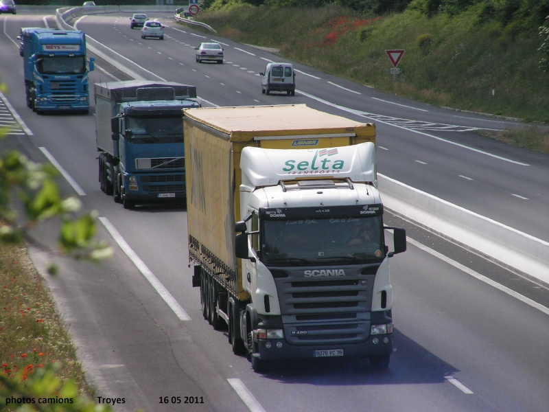 Selta (Le Busseau) (79) Rocad223