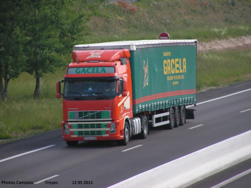 Gacela  (Irun) Rocade99