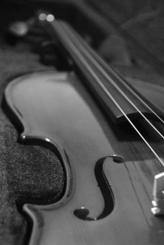 Crno-bela fotografija Violin10