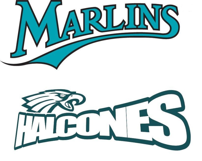 Marlins - Halcones de Vigo 12411310