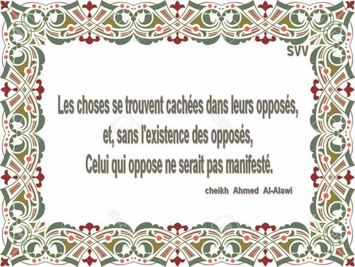 Citation du jour. - Page 5 Alawi10