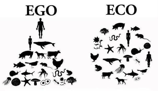 Ego, moi , soi , Soi , âme individuelle : qui suis-je,  selon les religions  et mon expérience?  - Page 4 Ego_ec10