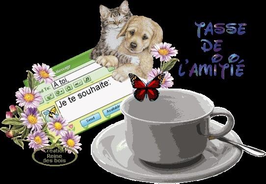 TASSES DE CAFE - Page 3 30_01_10