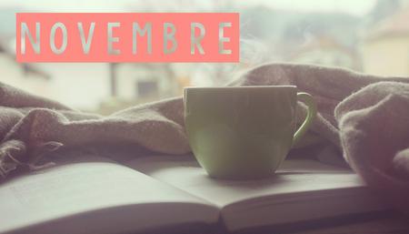 Les parutions en romance - Novembre 2018 Banniz10