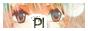 Pub'ile !!! Logo_p16