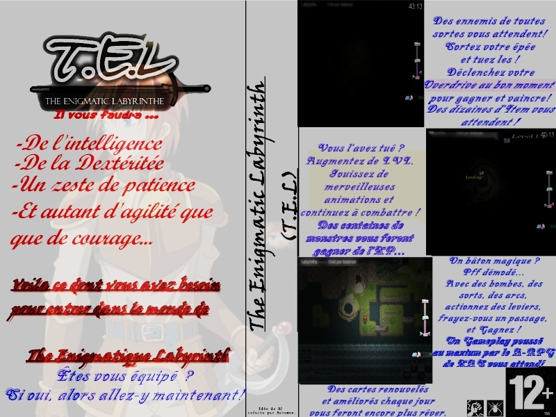The Enigmatic Labyrinth T.E.L. 1 Pochet10