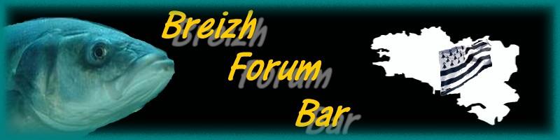 Breizh Forum Bar