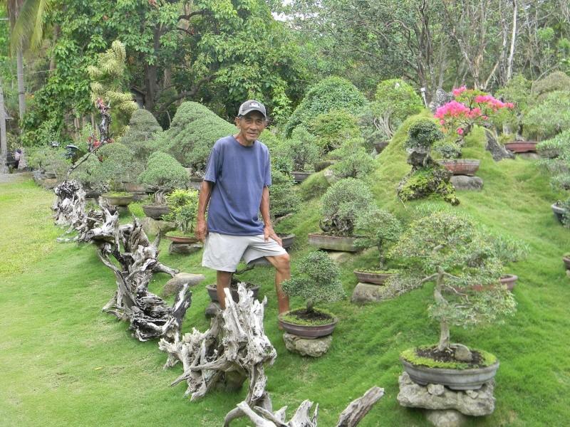 Ka Mario's Hidden Garden Dscn1313