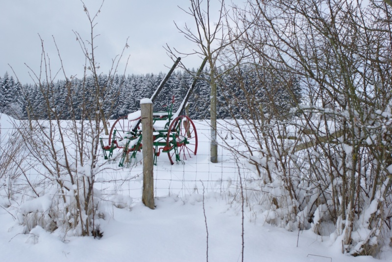 Arlon sous la neige Imgp4112
