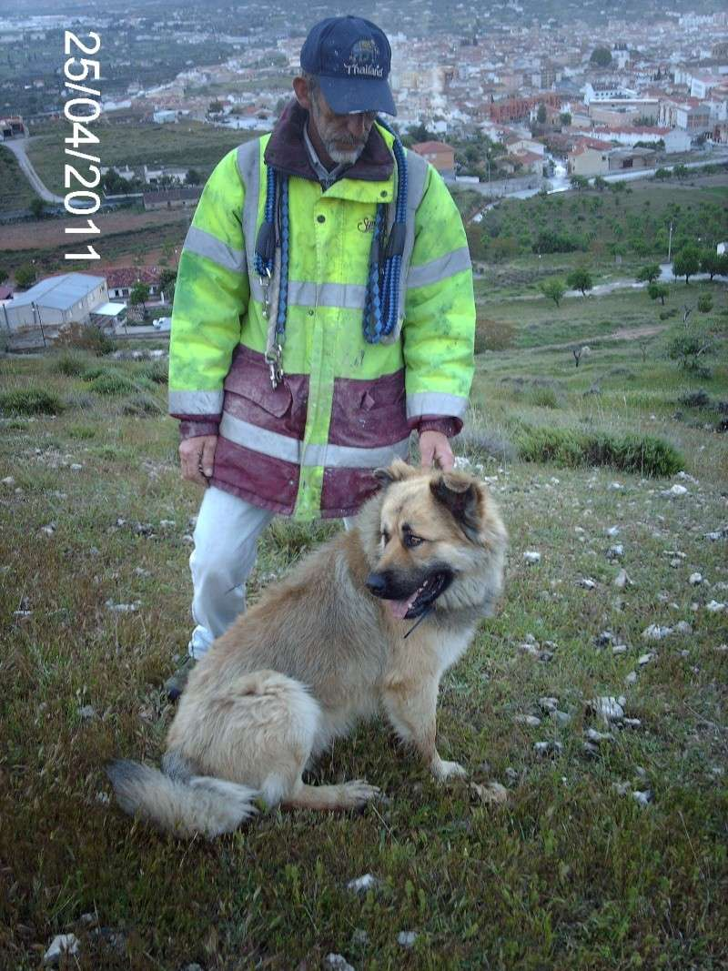 Leo, now homed :-) Leo_co16