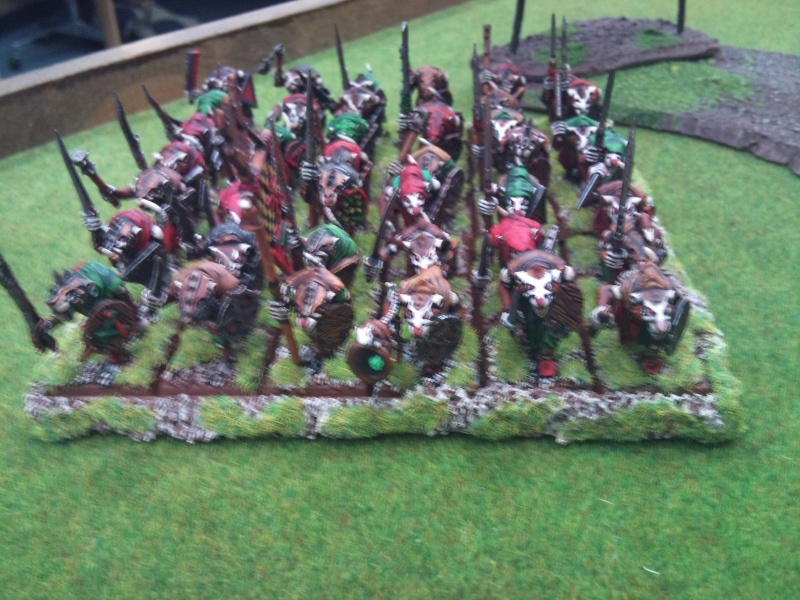 Battle Report Skaven vs Empire 2000pts ( pic Heavy )  Dsc_0053