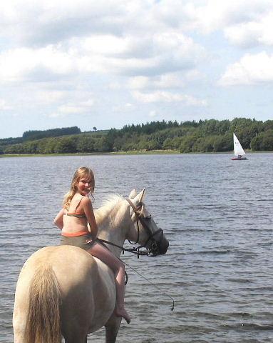 Les chevaux et l'eau, venez votez... Ikj10