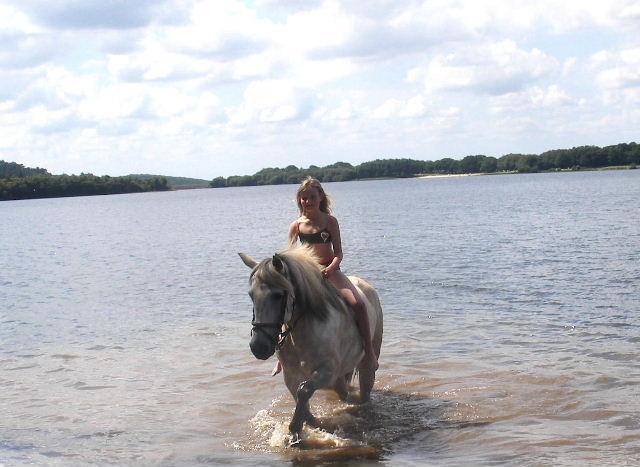 Les chevaux et l'eau, venez votez... Mjhk10