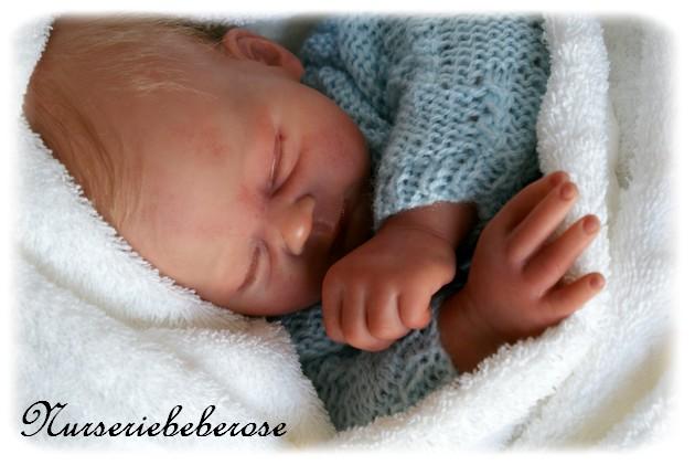 les bebes de ariel Dsc01611