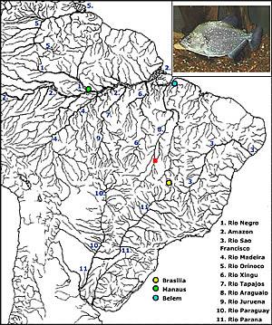 Serrasalmus geryi Map_se10