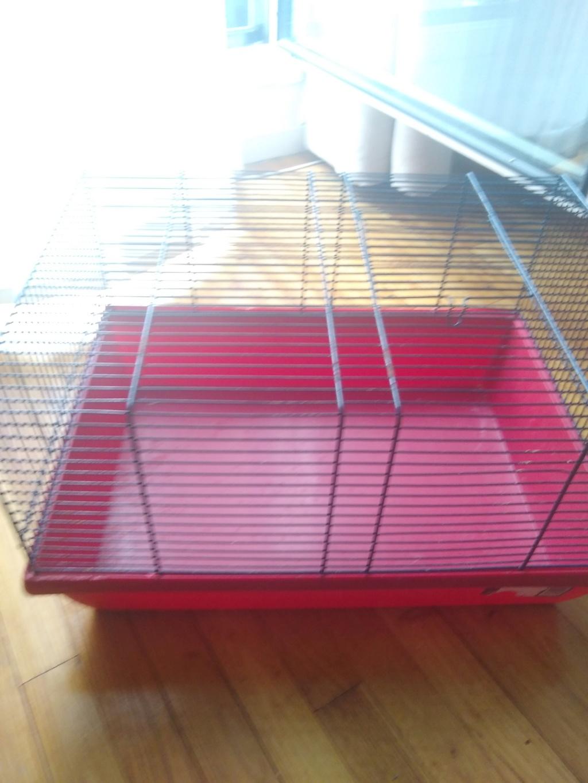 Cage de maternité boite de transport - don Img_2010