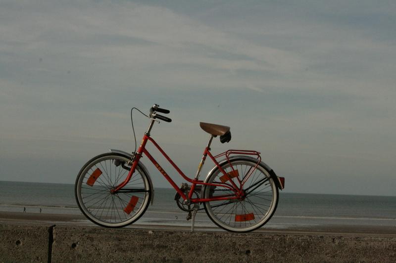 Quel vélo pour un petit garçon ? Img_3111