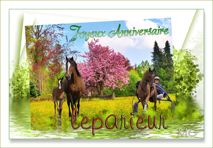 JOYEUX ANNIVERSAIRE LEPARIEUR Lepari10
